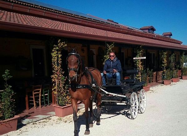 Agriturismo Casale Torre San Magno | Corato (BA) | Puglia