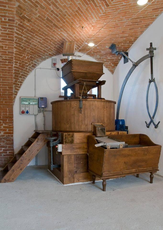 Azienda Agricola La Cascina dei Conti | Osasco (TO)